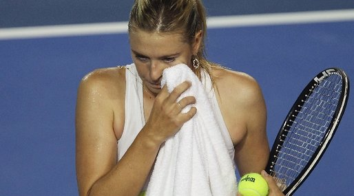 ATP, Stalking, Maria Sharapova, Tennis, Journalister