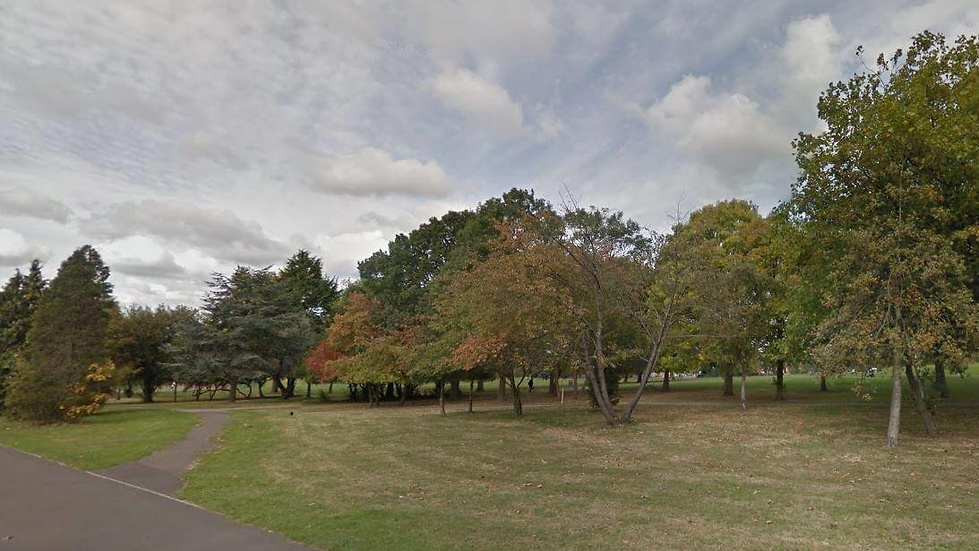 Attacken skedde i Roe Green Park i Brent i London.
