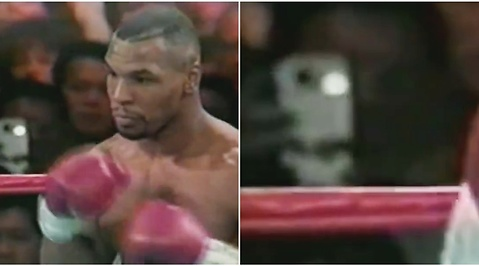 Mike tyson, Iphone